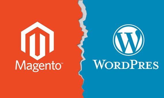 Magento vs. WordPress: Choosing Better eCommerce Development Platform
