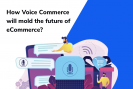 Voice Commerce and the future of eCommerce